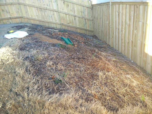 Slope Garden Bed