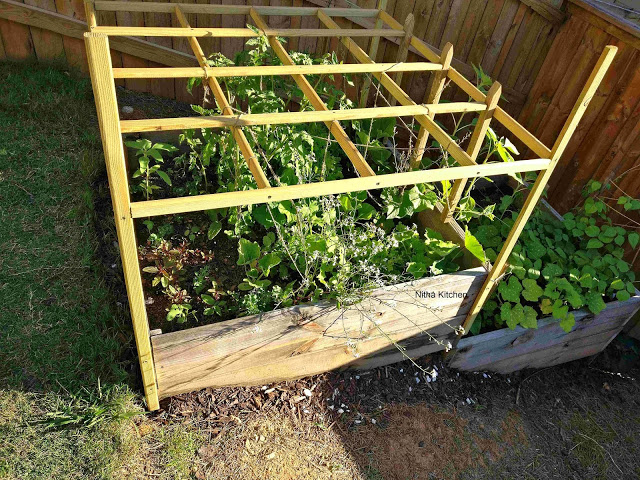 Slope Garden Bed18