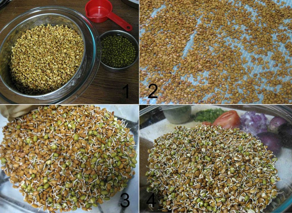 Homemade Kollu Sprouts1