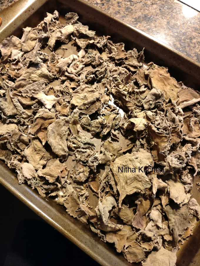 how to dry store and use oregano ajwain leaves