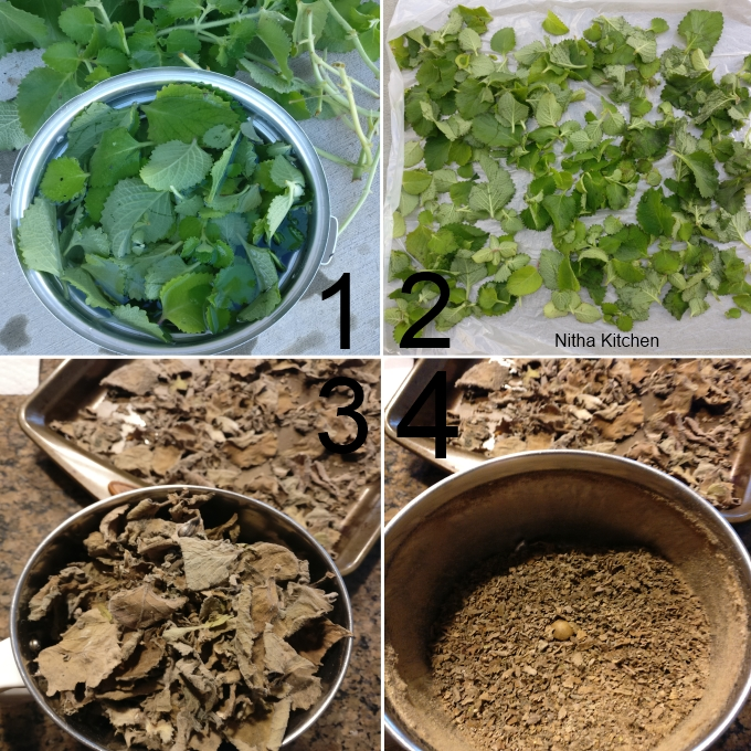 How to dry and store Oregano Leaves | DIY Dried Ajwain Leaves