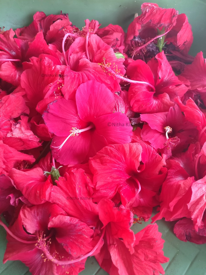 fresh Hibiscus Flowers picture nitha kitchen