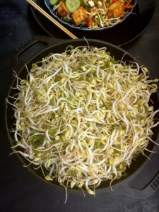 Homemade Mung Bean Sprouts Video Tutorial