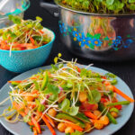 Asian Microgreens Vegetable Salad Recipe
