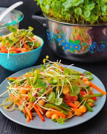 Asian Microgreens Vegetable Salad Recipe