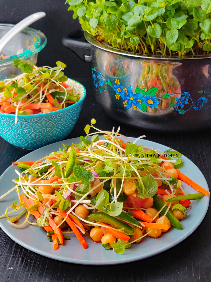 Vegetarian Salad Bowl Buddha Bowl with microgreens healthy recipe with video tutorial